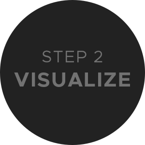 Step 2 Visualize
