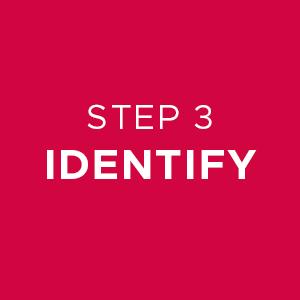 Step 3 Identify